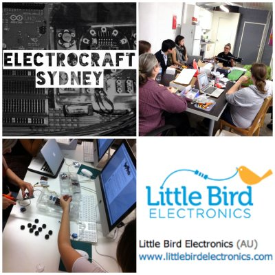 Electrocraft and Little Bird